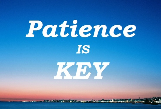 Image result for patience is key